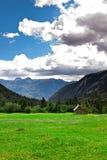 Green field in Slovenian Alps Royalty Free Stock Photo