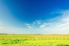 Green field with some fences on a beautiful blue sky day Royalty Free Stock Photography