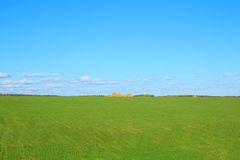 Green field with stack. Photo of the beautiful green field with stack Stock Photography