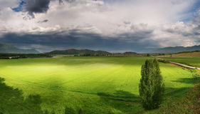Green field and storm clouds Royalty Free Stock Photo