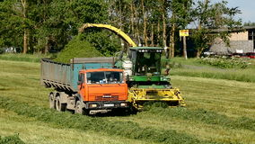 Green field in the summer of truck driving next to the combine. Pushkin, Russia - 2 July : on a green field in the summer of truck driving next to the combine stock video footage