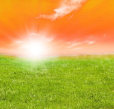 Green field and sun Royalty Free Stock Photography