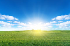 Green field with sun and blue sky with clouds. Green meadow  with sun and blue sky with clouds Stock Photography