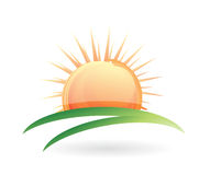 Green field and sun illustration Stock Photography