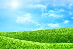 Green field with sun and sky Royalty Free Stock Image