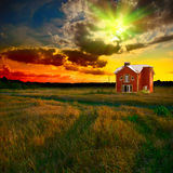 Green field at sunset Royalty Free Stock Image