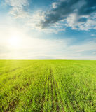 Green field and sunset in clouds Royalty Free Stock Image