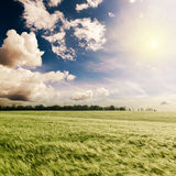 Green field and sunset in dramatic sky Royalty Free Stock Images