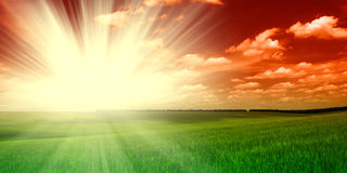 Green field and sunset sky royalty free stock image