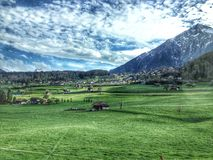 Green field. At Switzerland Stock Photo