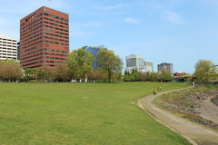 Green field and tall Buildings Royalty Free Stock Photo