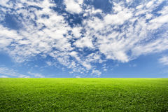 Green field top on blue sky. And clouds Royalty Free Stock Image