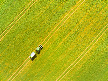 Green field with tractor. Stock Photo
