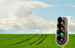 Green field and traffic light. Green wheat field with tractor track and traffic light Royalty Free Stock Photography