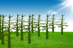 Green field and tree. Abstract landscape of green field and trees Stock Images