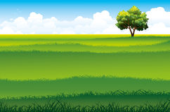 Green field and tree. Blossom tree and green field on a blue sky background with clouds. Summer landscape Royalty Free Stock Photos