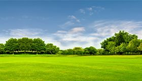 Green field, tree and blue sky.Great as a background,web banner Royalty Free Stock Image