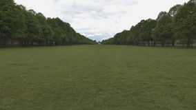 Green field and trees at the edges. stock video