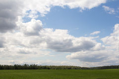 Green field and trees. Under the clouds Stock Photography