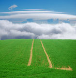 Green field trip to heaven Stock Images