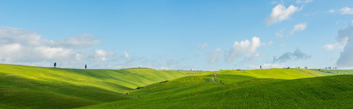 The green field Tuscany Italy. In the middle of the gorge Tuscany Stock Photography