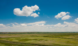 Green field under beautiful dark blue sky Royalty Free Stock Photography