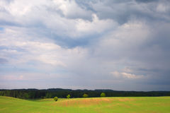Green field. Royalty Free Stock Photos