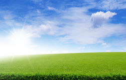 Green field under blue clouds sky Stock Photos