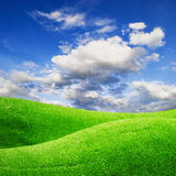 Green field under blue cloudy sky with sun Stock Photography