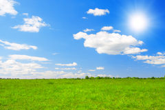 Green field under blue cloudy sky whit sun Stock Photos