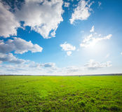 Green field under blue cloudy sky whit sun Royalty Free Stock Image