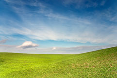 Green field is under blue sky Royalty Free Stock Photography