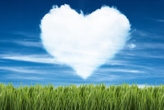 Green field under blue sky with heart shape on it Royalty Free Stock Photos