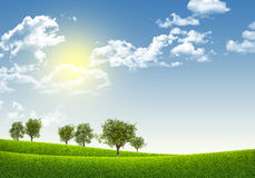 Green field under blue sky with white clouds. Nature background Royalty Free Stock Photo