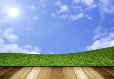 Green field under blue sky. Wood planks floor Stock Photos