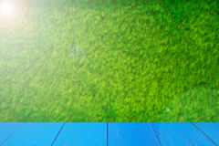Green field under blue sky. Wood planks floor. Beauty nature background. At Thailand Royalty Free Stock Photo
