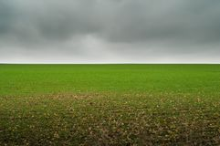 Green field under thunder clouds stock images