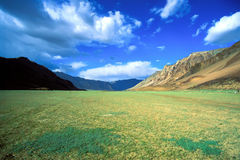 Green field valley in the himalayas. A green field valley on the way to Leh, in the great himalayas in India with a blue and cloudy sky Stock Photography