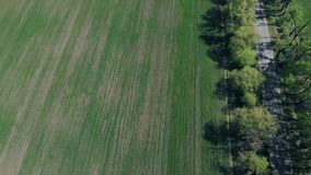 Green Field View From The Drone stock video footage