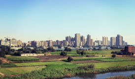 Green field in a village beside ,Cairo Royalty Free Stock Photography