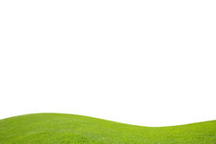 Green field on white background Royalty Free Stock Images