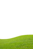 Green field on white background Royalty Free Stock Photography