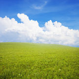 Green field with  white clouds Stock Photo