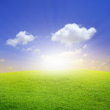 Green field wit beautiful blue sky Royalty Free Stock Images