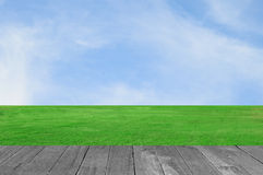 Green field and wood plant against blue sky.  Stock Photos
