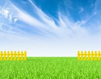 Green field and yellow fence Stock Photography