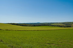 Green fields. Green field in easterns township Stock Images
