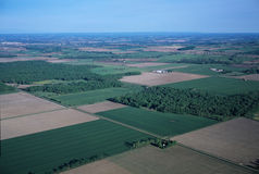 Green fields - Aerial view. Green Fields and a road - Aerial View Stock Photos