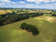 Green fields beautiful aerial landscape. Royalty Free Stock Images