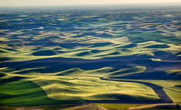 Green Fields Black Land Patterns Palouse Royalty Free Stock Photography